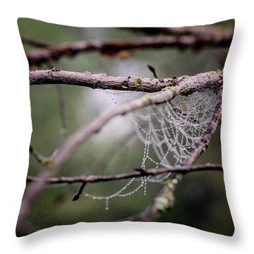 Find Comfort In The Chaos Throw Pillow