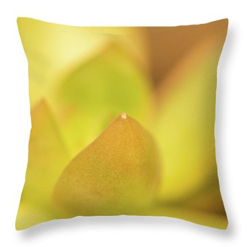Throw Pillow featuring the photograph Find Focus In Nature by Ana V Ramirez