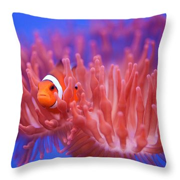 Fish Throw Pillows