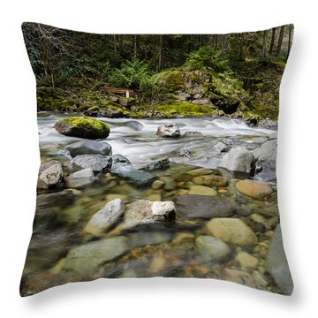 Finding Perfection In Nature Throw Pillow