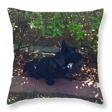 Finding Shade Throw Pillow