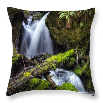 Finds A Way Throw Pillow by James Heckt