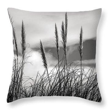 Fine Art Black And White-188 Throw Pillow