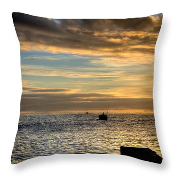 Fine Art Colour-138 Throw Pillow