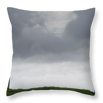 Throw Pillow featuring the photograph Fine Art Colour-148 by Joseph Amaral