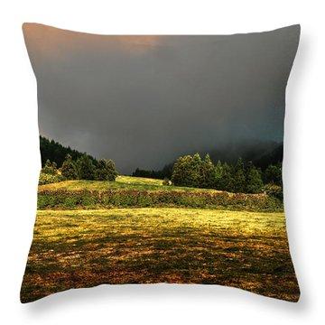 Throw Pillow featuring the photograph Fine Art Colour-174 by Joseph Amaral