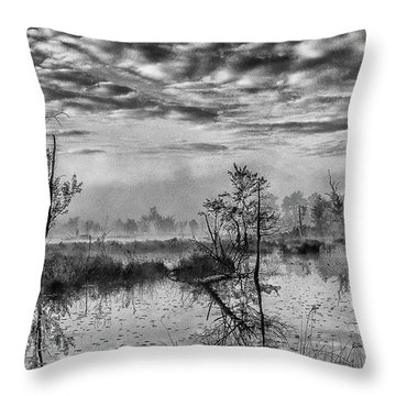 Throw Pillow featuring the photograph Fine Art Jersey Pines Landscape by Louis Dallara