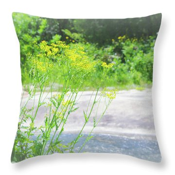 Throw Pillow featuring the photograph Fine Creek No. 2 by Laura DAddona