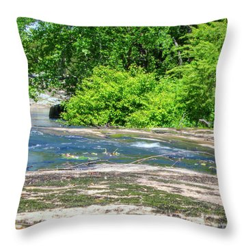 Fine Creek No. 3 Throw Pillow by Laura DAddona