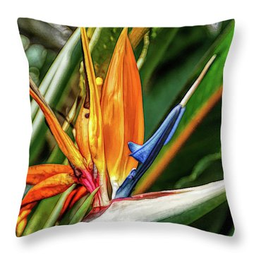 Throw Pillow featuring the photograph Fine Wine Cafe Bird Of Paradise by Aimee L Maher Photography and Art Visit ALMGallerydotcom