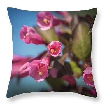 Throw Pillow featuring the photograph Fine Wine Weigela by William Lee