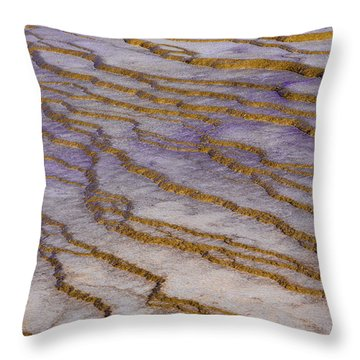 Fingerprint Of The Earth Throw Pillow