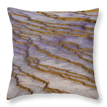Fingerprint Of The Earth Throw Pillow
