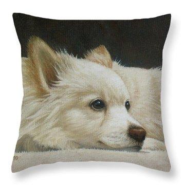 Pomeranian Throw Pillows