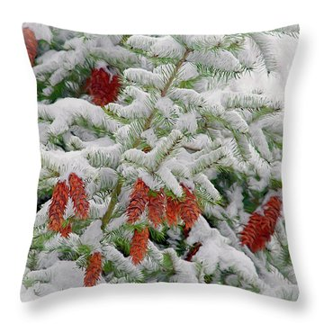 Throw Pillow featuring the photograph Fir Cones On White Photo Art by Sharon Talson