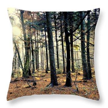 Fir Forest-3 Throw Pillow