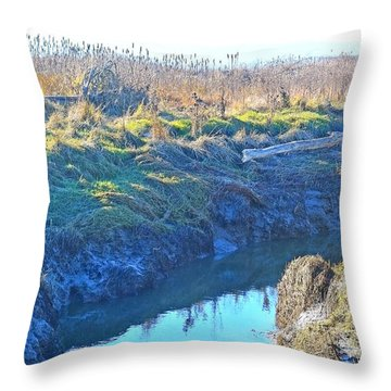 Fir Island November Throw Pillow