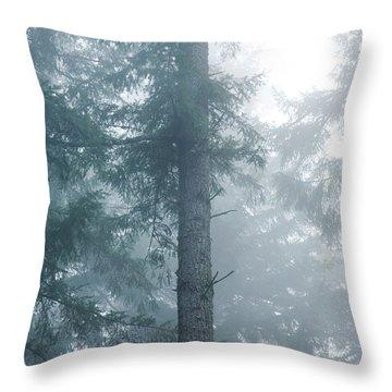 Fir Trunk In Fog Throw Pillow