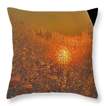 Throw Pillow featuring the photograph Fire And Ice by Susan Capuano