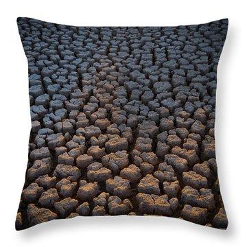 Fire Cracks Throw Pillow