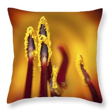 Fire Dancers Throw Pillow by Christina Lihani