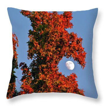 Fire Dragon Tree Eats Moon Throw Pillow