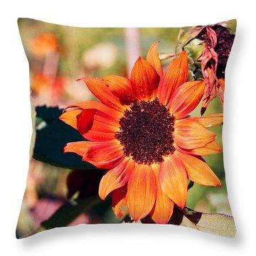 Fire Flower Throw Pillow by Jonathan Michael Bowman