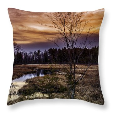 Fire In The Pine Lands Sky Throw Pillow