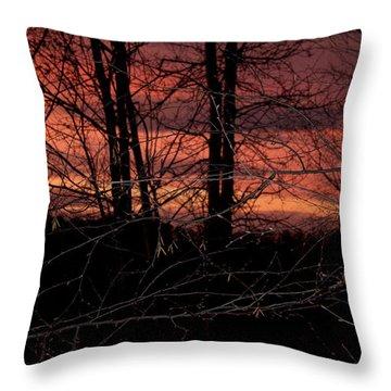 Fire In The Sky Throw Pillow by Robert Sander