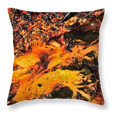 Fire Throw Pillow by John Bushnell