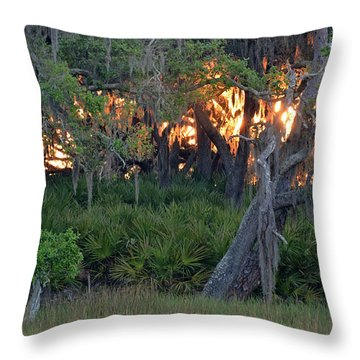 Throw Pillow featuring the photograph Fire Light Jekyll Island 02 by Bruce Gourley