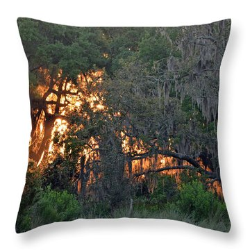 Throw Pillow featuring the photograph Fire Light Jekyll Island 03 by Bruce Gourley