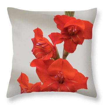 Throw Pillow featuring the photograph Fire Red Gladiolas by Angie Vogel