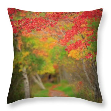 Throw Pillow featuring the photograph Fire Red Path  by Emmanuel Panagiotakis
