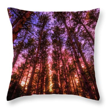 Throw Pillow featuring the photograph Fire Sky - Sunset At Retzer Nature Center - Waukesha Wisconsin by Jennifer Rondinelli Reilly - Fine Art Photography