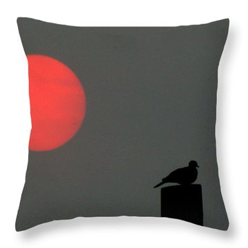 Fire Sun Sentinel Throw Pillow