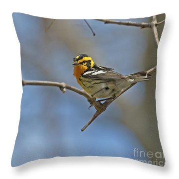 Fire Throat... Throw Pillow