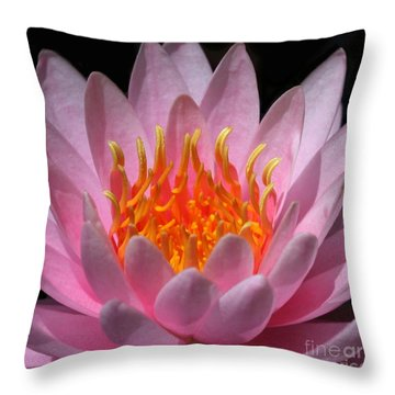 Fire Within Throw Pillow by Sabrina L Ryan
