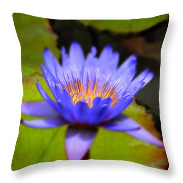 Fire Within Throw Pillow by Sue Melvin
