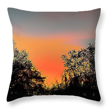 Throw Pillow featuring the painting Firefly by Steve Sperry