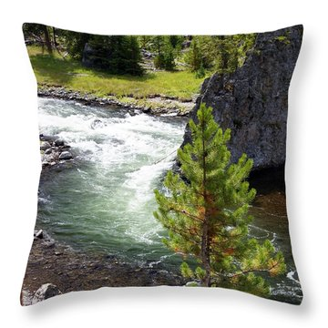 Firehole Fin Throw Pillow by Marty Koch