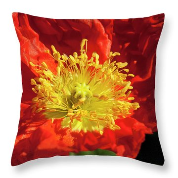 Firery Flower Throw Pillow