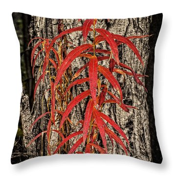 Fireweed 2015 Throw Pillow