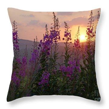 Fireweed Sunset Throw Pillow