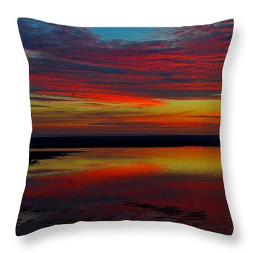 Fireworks From Nature Throw Pillow by Dianne Cowen
