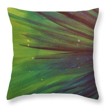 Fireworks IIi Throw Pillow by Anna Villarreal Garbis
