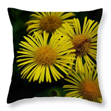 Fireworks In Yellow Throw Pillow by John S