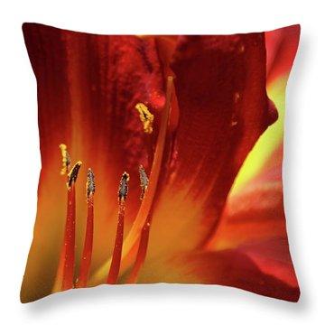 Firey Lily Throw Pillow by Sabrina L Ryan