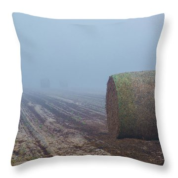 Firming In South Ga Throw Pillow