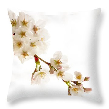 first blossoms on the Basin Throw Pillow